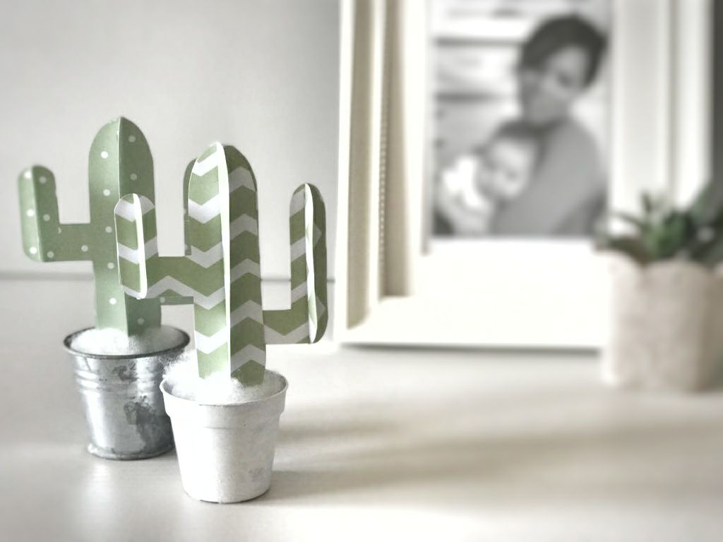 cactus paper