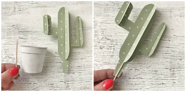 cactus tutorial .jpg